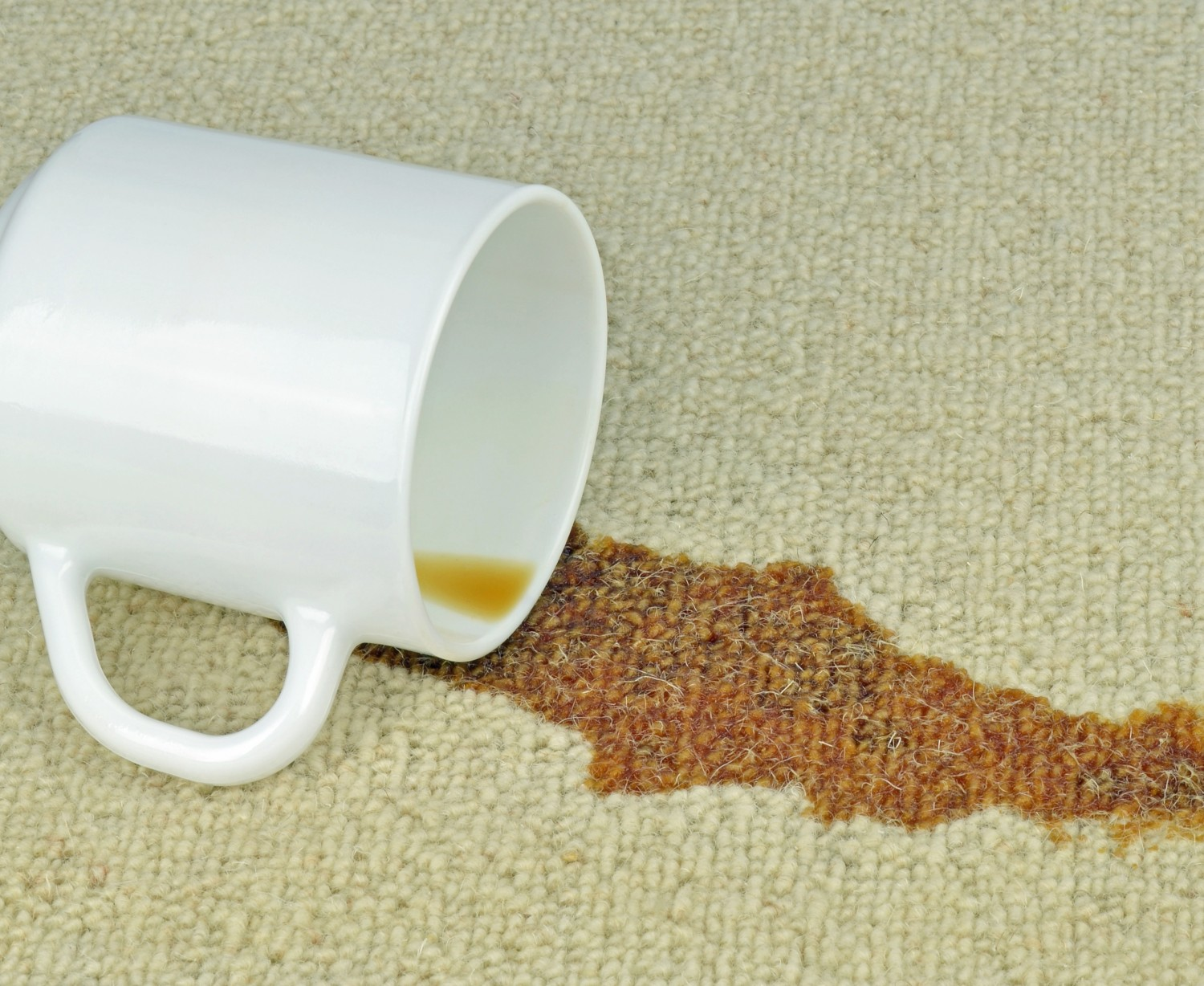 Kids And Pets Carpet Cleaner Images